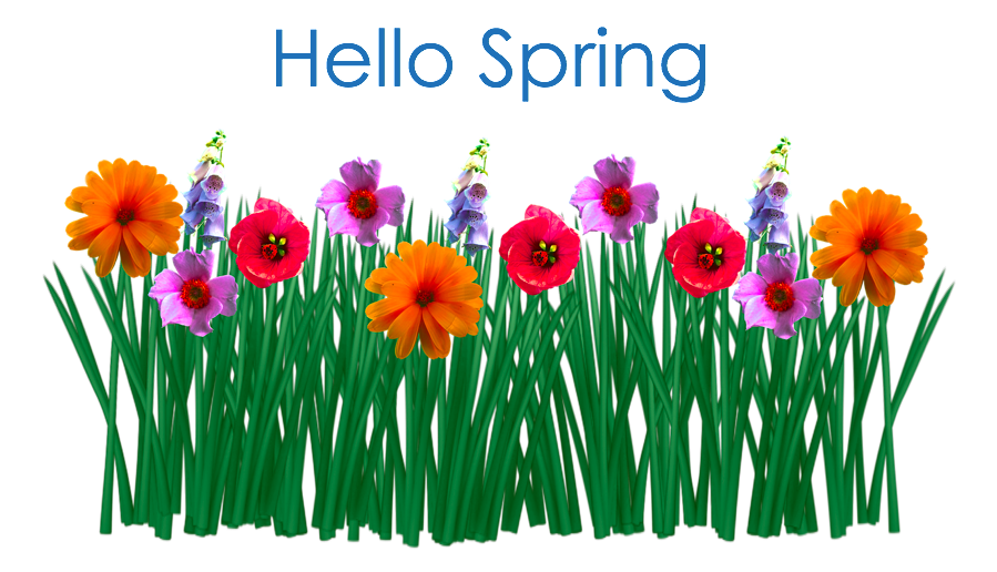 Time to Spring Clean Your Home, Business, YOU!